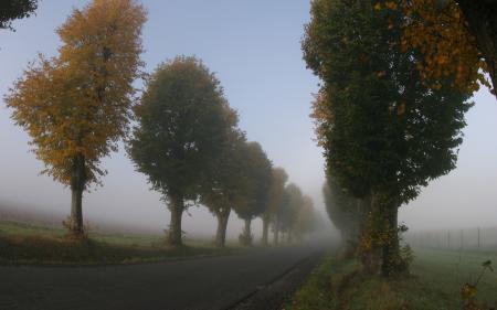 Фото пейзажи, природа, красивые обои для рабочего стола, дорога