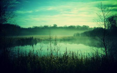 Картинки пейзаж, утро, природа, туман