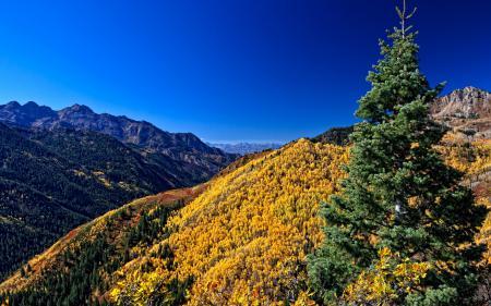 Фотографии небо, горы, лес, осень