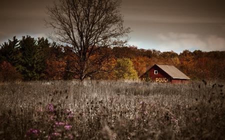 Заставки пейзаж, осень, природа, пеле