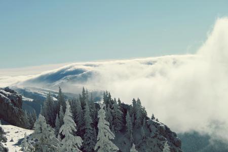 Картинки горы, лес, зима, облака