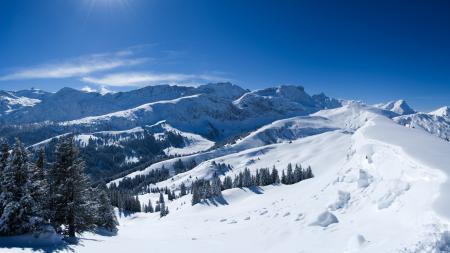 Обои Горы, снег, лучи солнца, деревья
