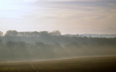 Обои пейзажи, природа, утро, поле