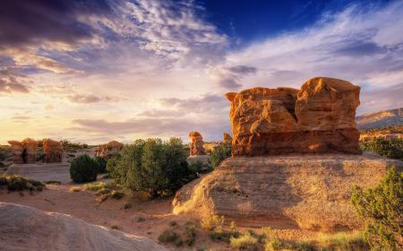 Фото каньон, камни, скалы, кусты