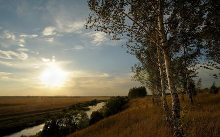 Фото утро, берёзы, небо, пейзаж