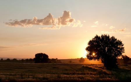 Картинки лето, утро, восход, солнце