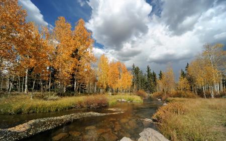 Картинки осень, река, деревья