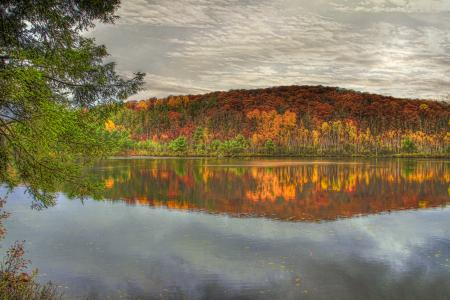 Заставки осень, лес, вода, небо