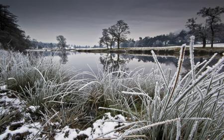Фотографии река, зима, природа, пейзаж