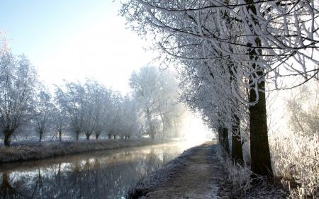 Картинки зима, река, иней, деревья