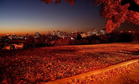 Фото пейзаж, природа, ночь, свет