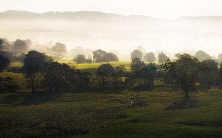 Заставки холмы, природа, деревья, туман
