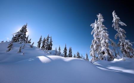 Фотографии пейзажи, зима, природа, зимние обои