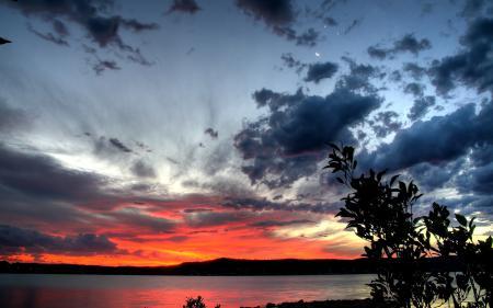 Фото пейзаж, природа, закат, ветка