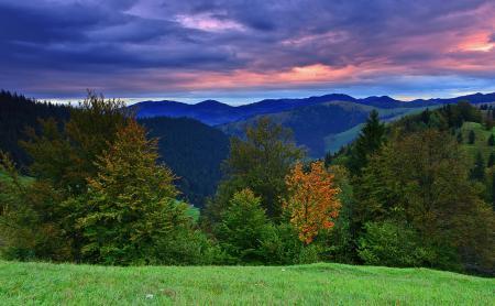Обои пейзажи, природа, autumn hill, осень