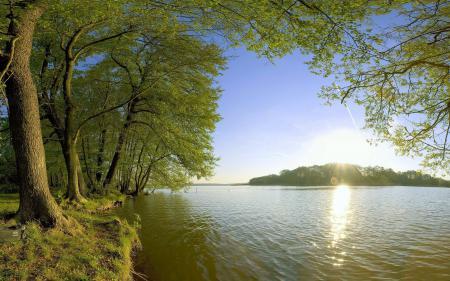 Фото Солнце, деревья, мутная, вода