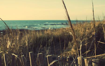 Фото beach, france, море, побережье