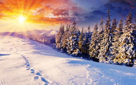 Фото пейзажи, зима, снег, природа
