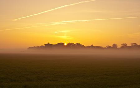 Обои поле, туман, свет