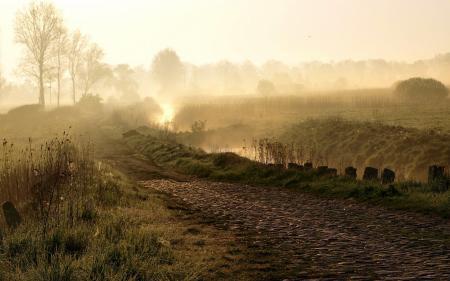 Картинки дорога, утро, туман