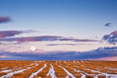 Обои пейзаж, природа, зима, снег