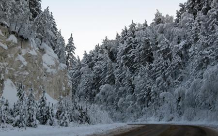 Обои дорога, горы, зима, деревья