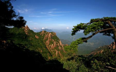 Картинки Скалы, лес, высота, красота.