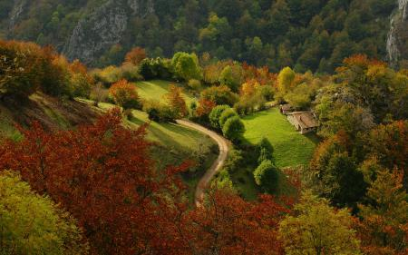 Заставки пейзаж, природа, зелень