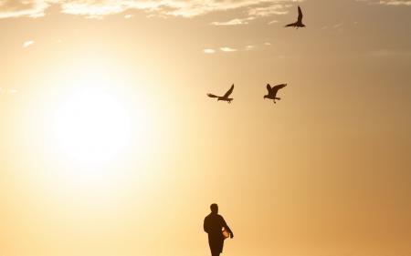 Заставки человек, птицы, небо