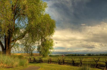 Фото небо, облака, тропинка, дерево