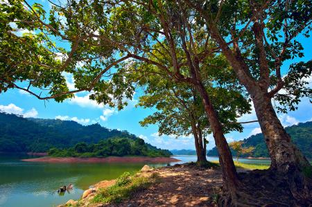 Картинки Pedu Lake, Kedah, Malaysia, Малайзия