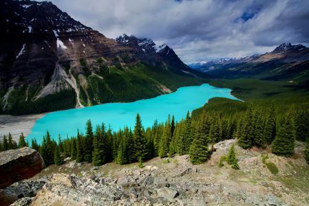 Картинки Канада, Peyto, Alberta, Banf
