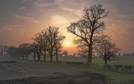 Заставки закат, туман, пейзаж, деревья