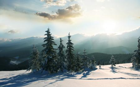 Картинки пейзажи, природа, зима, снег