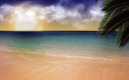 Фотографии пляж, прибой, пальма, спокойствие