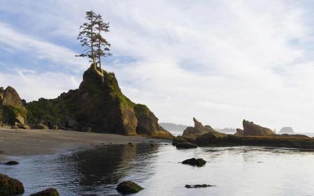 Фото море, скалы, дерево, камни
