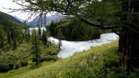 Фотографии горы, лес, озеро, вода