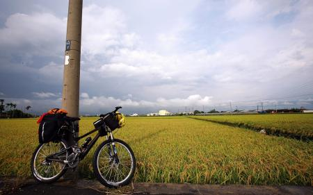 Фото поле, тучи, небо, велосипед