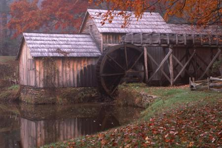 Фото осень, мельница, река