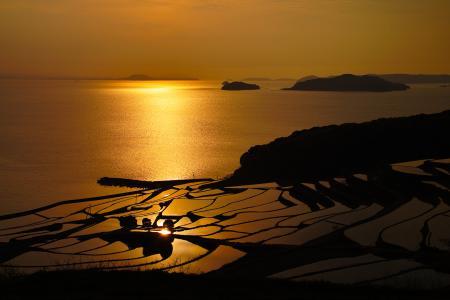 Обои море, золотое, вечер, осторва