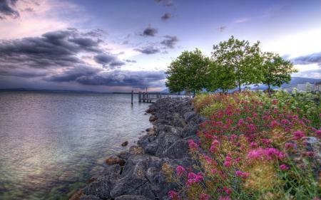 Фото озеро, цветы, камни, пейзаж