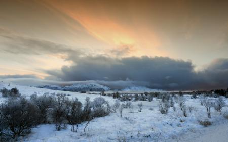 Фотографии Frosty morning, природа, пейзаж