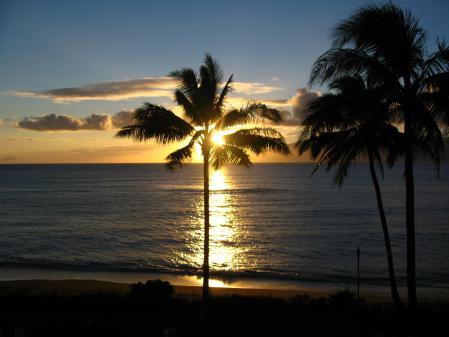 Заставки вечер, пальмы, закат, океан