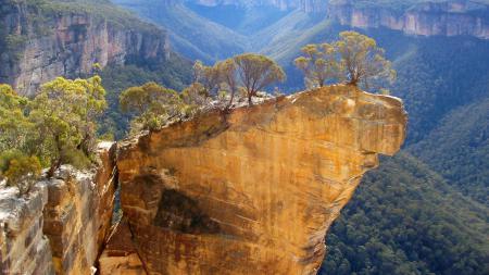 Фотографии горы, скала, обрыв, деревья