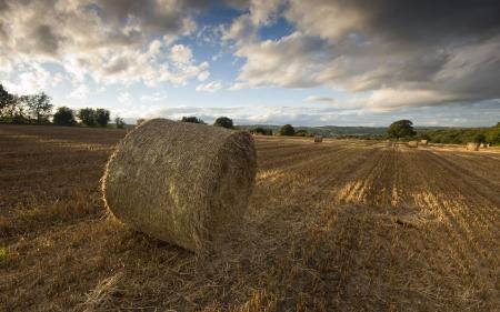 Обои поле, сено, закат, пейзаж