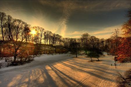 Фото зима, снег, парк, солнце
