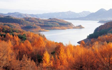 Фото осень, горизонт, деревья, горы