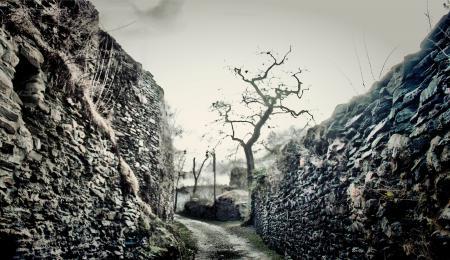 Заставки дорога, проход, камни, деревья