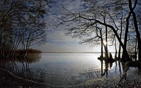 Фотографии Германия, река, деревья, солнце