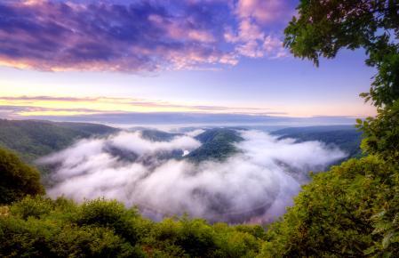 Картинки Германия, река, лес, туман